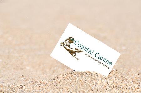 Coastal Canine